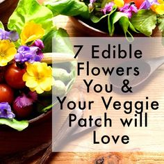 7-edible-flowers-you-and-your-veggie-patch-will-love