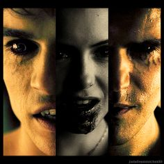 Vampire Diaries.... The time where they are the utmost venerable and at the same time the most dangerous