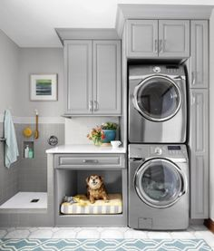 Vertical Laundry Room with Dog Be