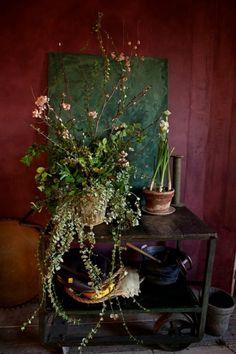 Marsala Pantone Color of the Year 2015 - wall color Suggestion by… Marsala, Home Goods Decor, Home Decor, Decoration Plante, Arte Floral, Pantone Color, Pantone 2015, Color Of The Year, Indoor Plants