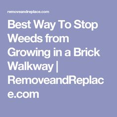 Best Way To Stop Weeds from Growing in a Brick Walkway | RemoveandReplace.com