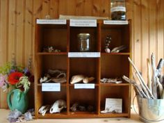 "Nature Collections for Children (from maya*made). This would also be great for a Discovery/Nature center in a classroom, along with some clipboards, pencils, and Q&A worksheets for being a ""wilderness explorer/scientist."" :)"