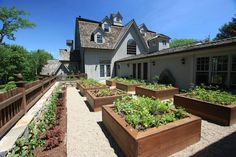 Lifted garden beds