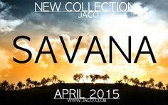 glaser, savannah,