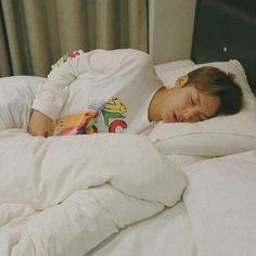 sleepy ♡ mingyu looking cuddly Jeonghan, Woozi, Seventeen Memes, Mingyu Seventeen, Seventeen Album, Chanyeol, Kpop, Kim Min Gyu, Choi Hansol