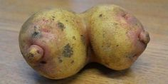 WEIRD Shaped Fruits and Vegetables