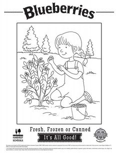 Printable - Farm to Table Activity & Coloring Sheet | Phys Ed ...