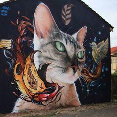 Street art                                                                                                                                                      More