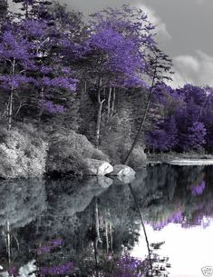 Nice classic black and white with purple!!!  I could see this in my bedroom with a nice nature scene that's not 100 percent natural.