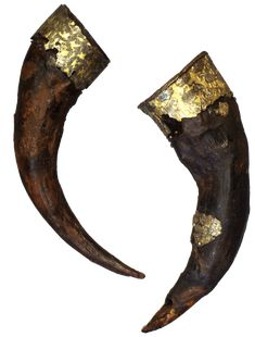 Drinkng Horns from theChernaya Mogila mound