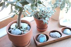 Sometimes I don't have to go outside to find inspiration. My pretty succulents. Desktop Calendar, Sticks And Stones, Window Sill, Stone Art, Rock Art, Art Blog, Painted Rocks, Diy And Crafts, Planter Pots