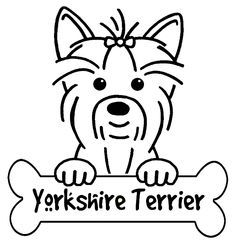 yorkshire terrier line drawing - Google Search
