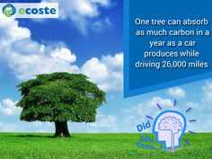 Interesting Fact about #Trees.