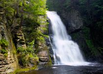 Bushkill Falls, PA.  Not sure why I've never been there...putting it on the 2012 summer must-do list.