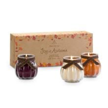 Joy of Autumn™ Scented Candle Trio $24