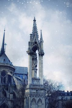 Ile de la Cité, Notre Dame, 6 Place du Parvis Notre-Dame, Paris IV