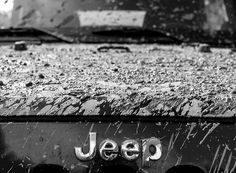 sexy muddy jeep logo