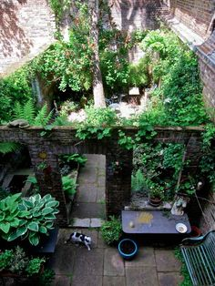 The Gardens of Spitalfields. Six gardens in Spitalfields are open for visitors on Saturday 13th June from 10am – 4pm. Tickets cost £12 to visit them all and you can find details at the website of the National Gardens Scheme.