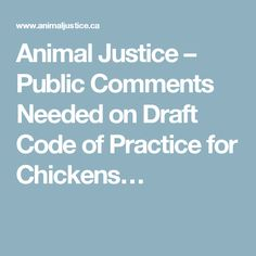 Animal Justice – Public Comments Needed on Draft Code of Practice for Chickens…