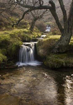 Nether Seal Clough, Derbyshire, England | Most Beautiful Pages...