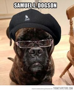 Dogs Never Mean to Fail. It's a repin but funny as hell!!!