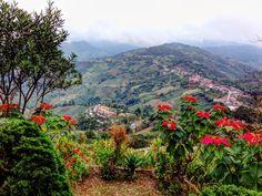 Mountain View near Chang Rai.