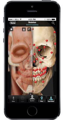 Virtual Human Body App, anatomie