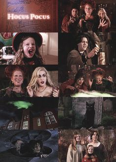 """""""Hocus Pocus"""".... this and """"It's The Great Pumpkin, Charlie Brown"""".... required mid-October viewing annually!  :-)"""