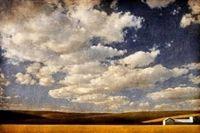 Audrey Hall: Summer Wheat Field