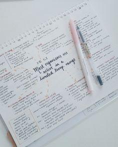 studyparadise: study time