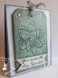 Amaryllis Sparkle