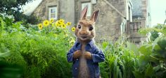 TRAILERS y CINE: PETER RABBIT segundo trailer en español