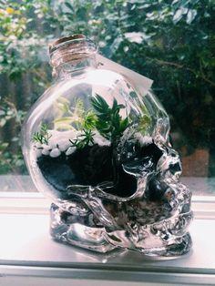 Skull Terrarium Living & Breathing by formandflux on Etsy