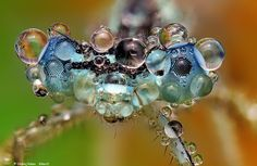 Blue by Ondrej Pakan on 500px