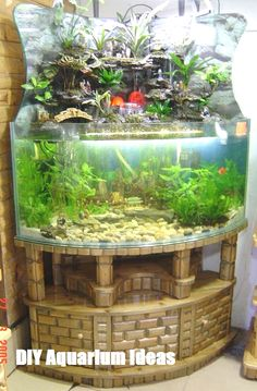 Pin By T R On Aquariums And Aquascaping Aquarium Diy Aquarium, Aquarium Design, Aquarium Terrarium, Aquarium Stand, Saltwater Aquarium, Aquarium Fish Tank, Planted Aquarium, Freshwater Aquarium, Aquarium Decorations