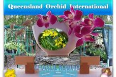 Promoting diverse interchange of sciences, arts, ideas and cultures pertaining to orchids via dynamic, interactive formats with an international horizon. Growing Orchids, Wordpress, Joy, Plants, Planters, Plant