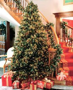 love the tree by the staircase