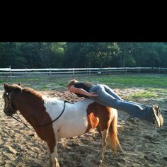 Planking Planking, Face Down, Rest Of The World, Stuff To Do, Backdrops, Things To Think About, Horses, Places, Funny