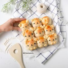 DIY Kitty Buns Recipe and Tutorial from Little Miss Bento.This recipe is in grams not cups, but it is a standard rising yeast roll recipe (and it's easy to find conversion charts online). To make the cat features, an egg wash and cocoa powder was...