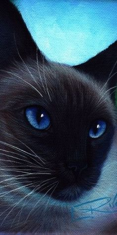 "blue eyes. L Risor  =^..^=Thanks, Pinterest Pinners, for stopping by, viewing, re-pinning, & following my boards.  Have a beautiful day! ^..^ and ""Feel free to share on Pinterest ^..^   #catsandme #cats"