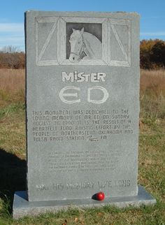 Mister Ed (1949 - 1970) from the classic tv show Mr Ed ( 'A horse is a horse of course, of course, unless of course it's that horse is the famous Mr Ed ' ) He isn't talking much now though !! ☑️