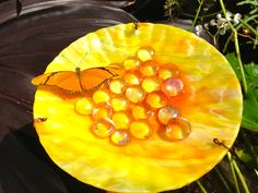 The Hidden Pantry - Find a pretty plate, some glass marbles and a place in your garden for them to rest.  Add only enough water to come to just below the tops of the marbles so passing butterflies may lite atop the marbles and refresh themselves.