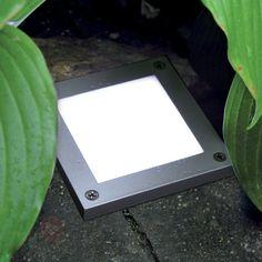 LED Aufbauleuchte PROFI für den Außenbereich sicher & bequem online bestellen bei Lampenwelt.de.