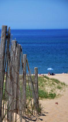 Cape Cod Beach by johnnie Cape Cod Beaches, Sandy Beaches, Parasols, I Love The Beach, Am Meer, Beach Scenes, Ocean Beach, Nantucket, Beautiful Beaches