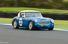 Austin Healey 3000 by Richard Barton