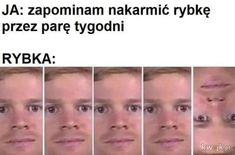 Polish Memes, Humor, Kuroko, I Laughed, Haha, Language, Funny, Life, Humour
