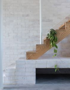 House A By Whispering Smith Local Australian Architecture & Design Scarborough, Perth Image 1 Detail Architecture, Stairs Architecture, Interior Architecture, Modern Staircase, Staircase Design, Stair Design, Iron Staircase, Spiral Staircases, Staircase Ideas
