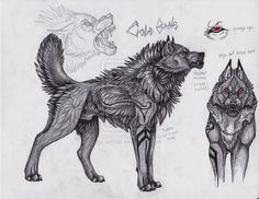 Cole Bane wolf ref by sioSIN.deviantart.com on @deviantART