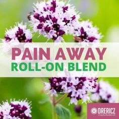 Essential Oils for Pain Do-It-Yourself Roll On