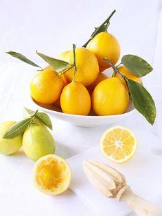 Still Life: Meyer Lemons by TreatsSF, via Flickr